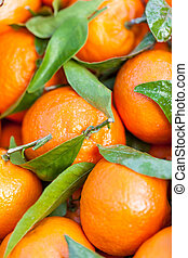 Background of fresh tangerines or clementines