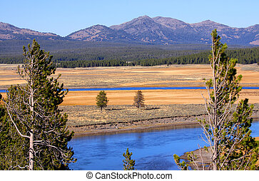 Yellowstone river scene - Scenic Yellowstone river in...