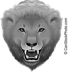 A grey lion - Illustration of a grey lion on a white...