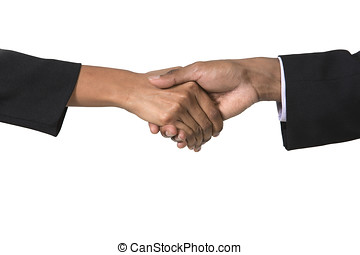 Indian Businessman and businesswoman shaking hands Isolated...