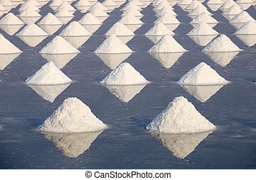 sea salt in a pan ready for harvesting.