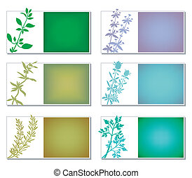 Aromatic Herbs Banners - Set of six banners with aromatic...