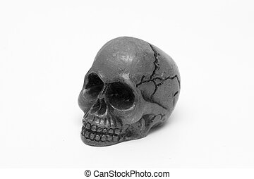 skull, black and white, white background