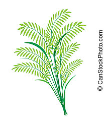 Cereal Plants or Ferns Leaves on White Background -...