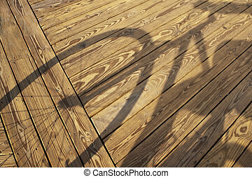 Bicyclist's Shadow - Shadow cast by bicyclist on the...