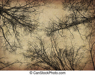 Grunge bare trees - Dark bare trees silhouettes on grunge...