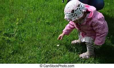 child meadow flower