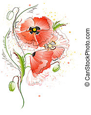 White Background with Red Poppy Flowers