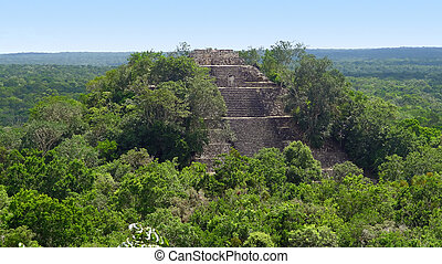 overgrown temple at Calakmul, a mayan archaeological site in...