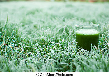 healthy green detox juice - healthy organic green detox...