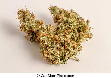 Marijuana Buds - Close up of medicinal marijuana buds oh...