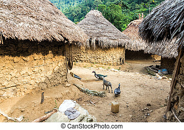 Indigenous Village - Indigenous Kogui village in the Sierra...