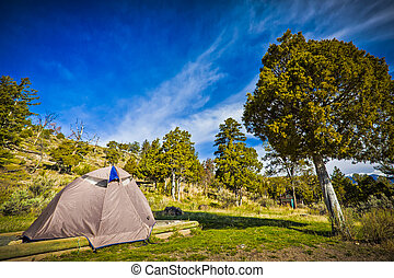 Campsite in Yellowstone National Park
