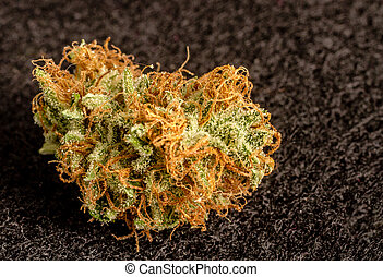 Marijuana Buds - Close up of medicinal marijuana buds on...