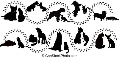 animals cats and dogs