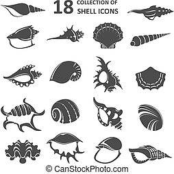Collection of shell icons - Vector image of collection of...