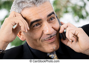 Businessman calling on phone - Gray haired mature...