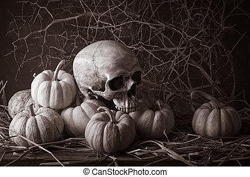 still life pumpkins - Still life with human skulls and...