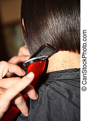 haircut - A haircutter is combing and cutting the hairs of a...