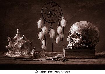Still life dream catcher - Still life with human skull ,...