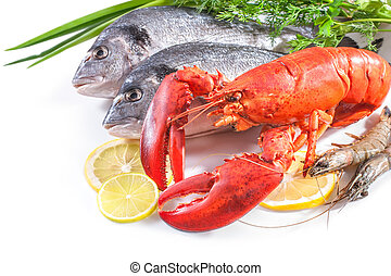 sea food on white background - red lobster and sea bream...