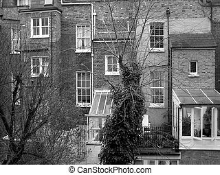 Facade - Traditional English dwellings in London