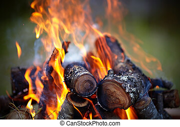 Campfire - Bright campfire Fire in marching conditions