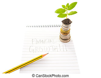Financial Growth - Concept image of financial growth