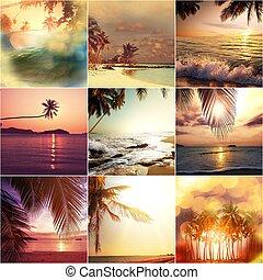 Beach collage - Beach background