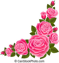 Border of roses - Vector illustration isolated border of...