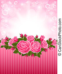 Roses backdrop - Vector illustration of a beautiful backdrop...