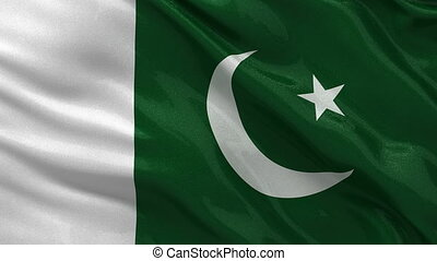 Flag of Pakistan seamless loop - Flag of Pakistan gently...