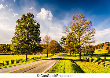 Trees and farm fields along a road in rural York County,...