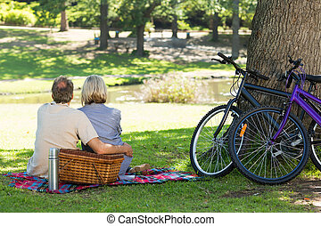 Couple with picnic basket in park - Rear view of couple with...