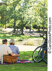 Couple with picnic basket in park - Rear view of loving...