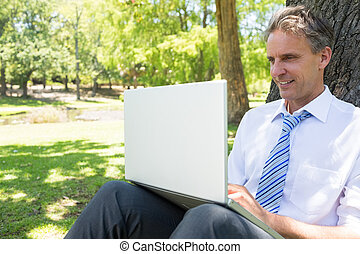 Mature businessman using laptop - Mature businessman smiling...