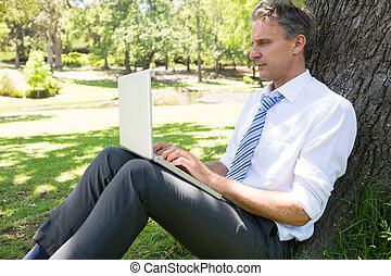 Mature businessman using laptop in park - Businessman...