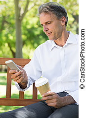 Businessman using mobile phone at park