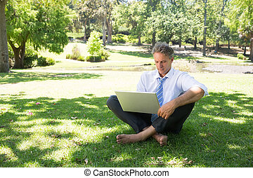 Businessman using laptop on grass - Full length of mature...