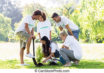 Volunteers planting in park