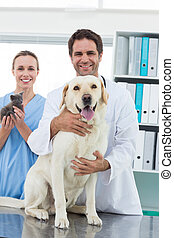 Veterinarians with dog and kitten - Portrait of happy...
