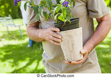 Mid section of a man holding flower pot at park - Close-up...