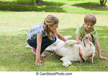 Full length of kids playing with pet dog at park - Full...