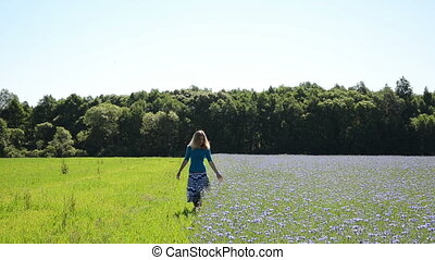woman cornflower field