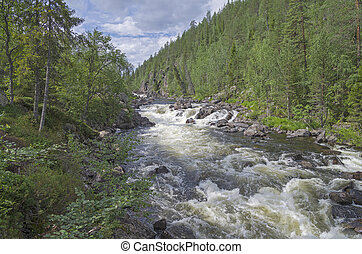 Rapids. - Rapids on the small mountain river in the Murmansk...
