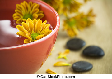 bowl of water and flowers - SPA feelings-bowl of water,...