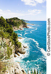 Cliff - Seashore with cliff and local vegetation in a windy...
