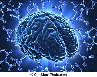 The human brain - Very high resolution 3d rendering of an...