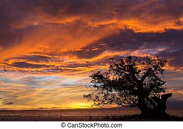 Dramatic fiery orange sunset in Siquijor