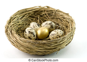 Nest with eggs. One egg is gold.